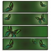Set Of Beautiful Banner With Green Butterflies