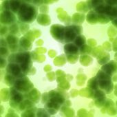 Bacteria cells close up medical background
