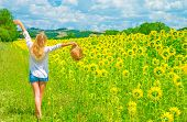 Happy woman walking on sunflower field in sunny day, raised up hands, beautiful landscape, European