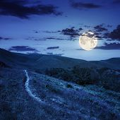 stock photo of moon-flower  - thin path near the lawn with purple flowers in the shade of trees on a hillside at night in full moon light - JPG