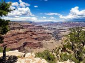 Grand Canyon National Park Panorama
