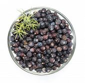 Juniper Berries In A Bowl Over White