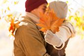 young couple kissing behind big leaves in autumn