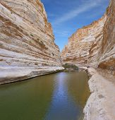 Unique canyon in the desert. Picturesque canyon Ein-Avdat in the Negev desert. Clean cold water in t