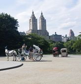 Tourists Board A Horse-drawn Carriage In Central Park