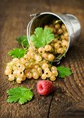 Bucket With White Currants