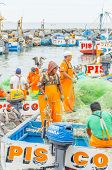 PISCO, PERU, MAY 21, 2014 - The picturesque fishermen's wharf of San Andres. Fishermen unload caught fish while pelicans try to stole some of them.