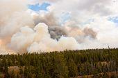Horizon Of Fire In Yellowstone Park