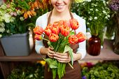 Female florist holding bunch of red tulips