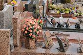 France, The Cemetery Of Triel Sur Seine