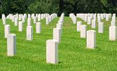 Military Gravestones