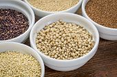 sorghum and other gluten free grains (amaranth, millet, teff quinoa)  in small ceramic bowls