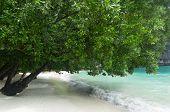 Hong Island Beach In Krabi Thailand