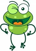 Green frog winking enthusiastically