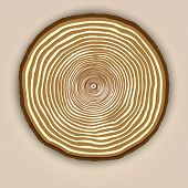 Vector wood texture background with tree rings