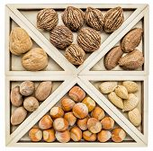 variety of nuts (pecan, almond, black and English walnuts, hazelnuts, and Brazilian nuts)) in a geometrical wood tray inspired by CHinese tangram puzzle