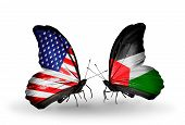 Two Butterflies With Flags On Wings As Symbol Of Relations Usa And Palestine