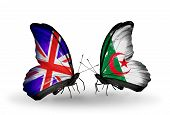 Two Butterflies With Flags On Wings As Symbol Of Relations Uk And Algeria