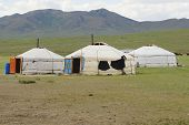 Three traditional Mongolian yurts in steppe, circa Harhorin, Mongolia.