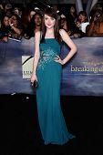 LOS ANGELES - NOV 11:  Dakota Fanning arrives to the