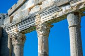 pic of albania  - Temple ruins in Ancient Apollonia in Albania - JPG