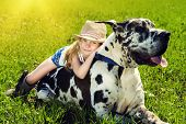 stock photo of happy dog  - Happy little girl with her mastiff dog on a meadow in summer day - JPG