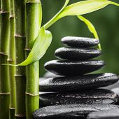 stock photo of bamboo leaves  - zen basalt stones and bamboo  - JPG