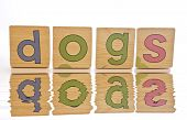 Wooden Tiles - Spelling Dogs