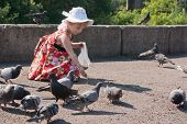 Girl In Dress Feeding Pigeons