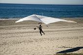 Picture of hang glider 2.