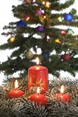 foto of frot  - red candles assorted in frot of christmas tree - JPG