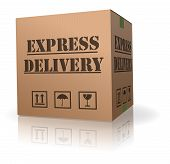 Expres Delivery