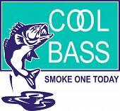 largemouth bass jumping cool bass