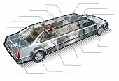 Vector limousine inforgaphics cutaway