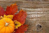 Bunte Herbst-Hintergrund mit Charme