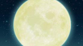 pic of fool  - Starry night sky with fool moon - JPG