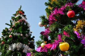 foto of tassels  - big christmas tree - JPG