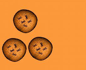 pic of microbes  - Three microbe orange seen in a microscope in a medical office - JPG