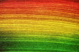 picture of reggae  - Green red yellow wood background  - JPG