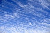 Unique Thin Clouds in a Blue Sky