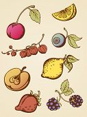 Vintage Fruits