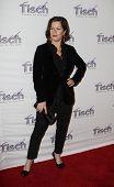 New York 6. Dezember: Schauspielerin Marcia Gay harden beachtet das Gesicht des Tisch-Gala in Frederick p. Rose