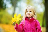 Cute Little Girl Having Fun On Beautiful Autumn Day. Happy Child Playing In Autumn Park. Kid Gatheri poster