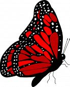 side view of red monarch butterfly vector - detailed