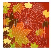 fall leaves with spiderweb illustration