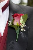 beautiful red rose  on lapel of male