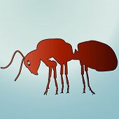 red ant vector