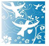 stylized birds with funky background
