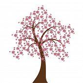 Blüte Vektor
