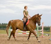 pic of girth  - Young female riding on horse - JPG